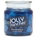 Hershey's by Hanna's Candle Company 00102192 Jolly Rancher Jelly Jar Candle, 14.75-Ounce, Blue Raspberry